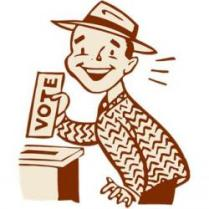 Person Voting -- Voting Box