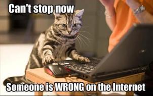 someonewrongoninternet
