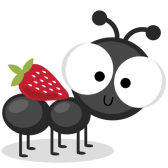large_ant-with-strawberry