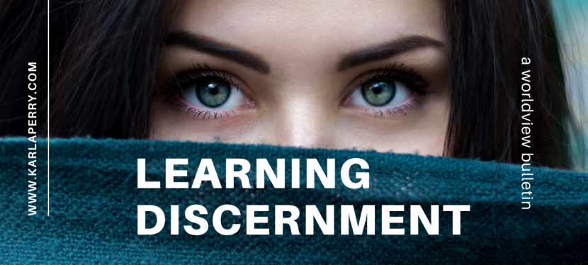 Worldview Bulletin: LearningDiscernment